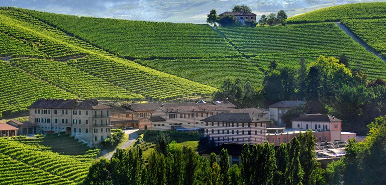 An Important Barolo's 2013 Debut