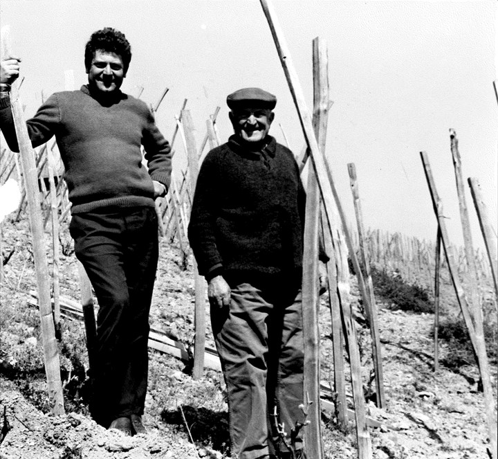 Robert and Georges Jasmin in the vineyard. Photo courtesy of Yapp Bros. UK